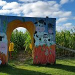 entrance to corn maze